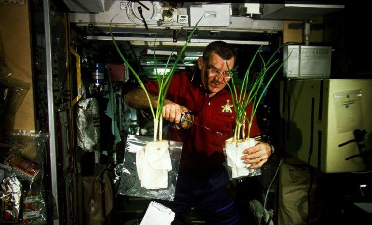 UHD65_4K_astronaut_plants
